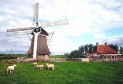 Правила поведения туриста в Нидерландах