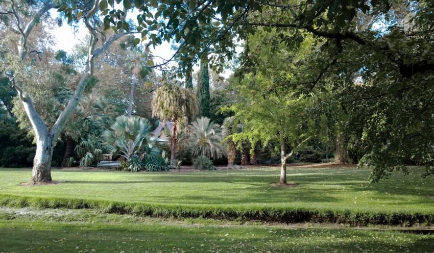 Аделаида ботанический сад