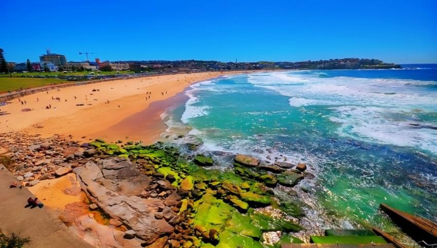 Сидней пляж бонди