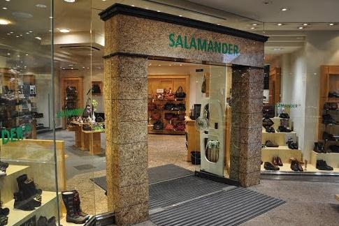 Вена саламандер